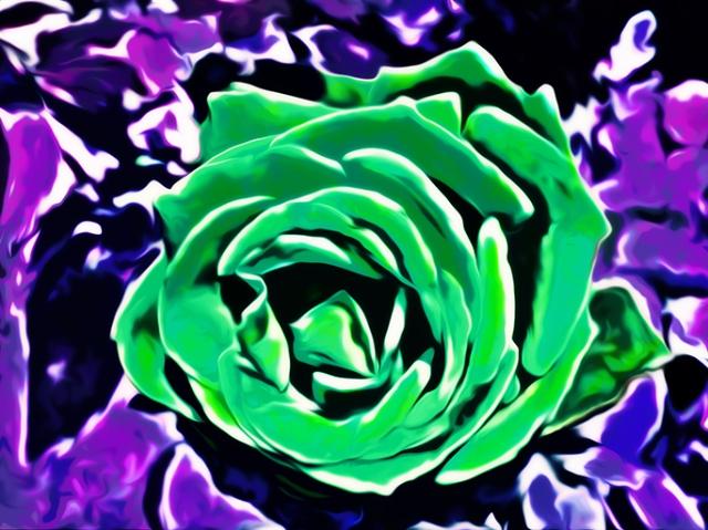 Green Rose 2013