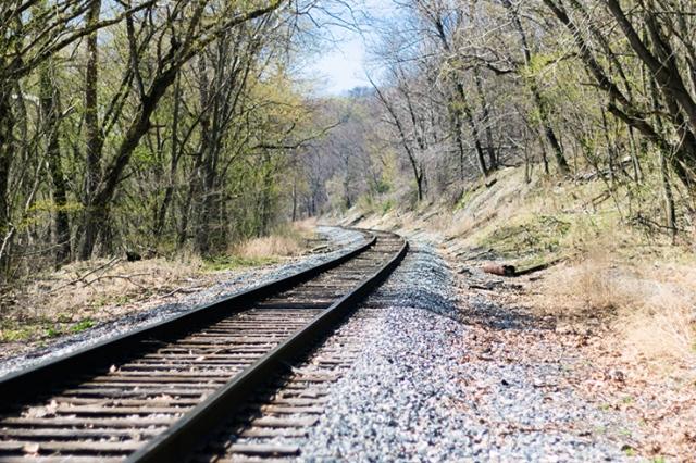 Train tracks in the spring