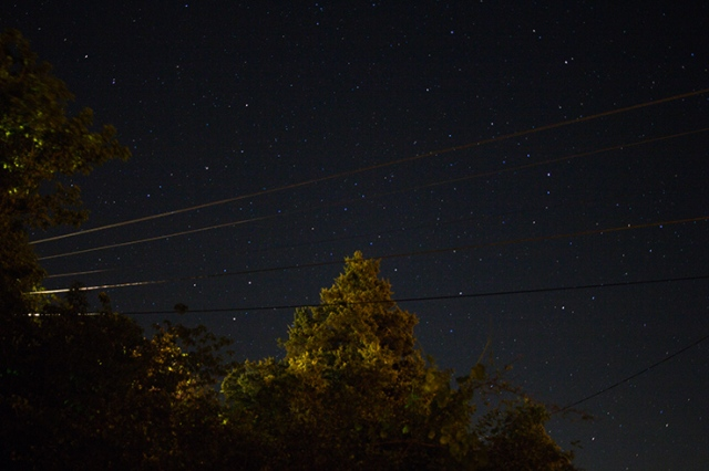 Trees and power lines with stars 03