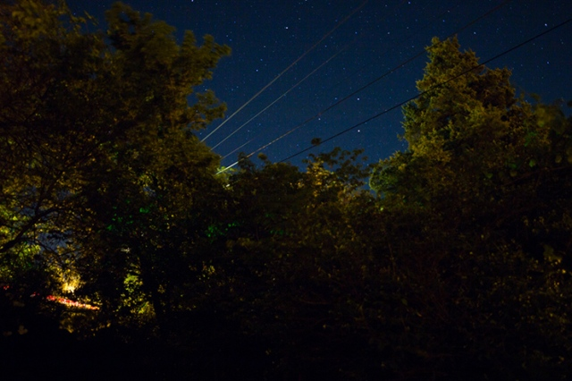 Trees and power lines with stars 04
