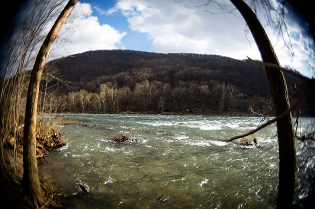 Fisheye River Moutain Tree